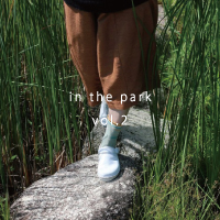 S_in-the-park-2