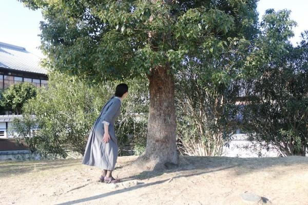 木の下で_1