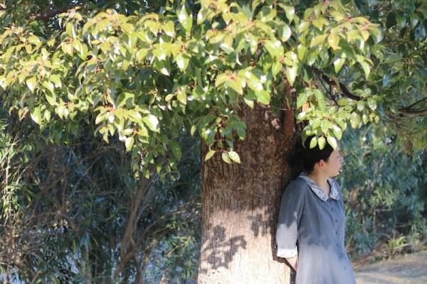 木の下で_10