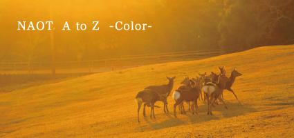 L_color