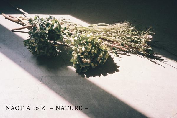 TOP_nature